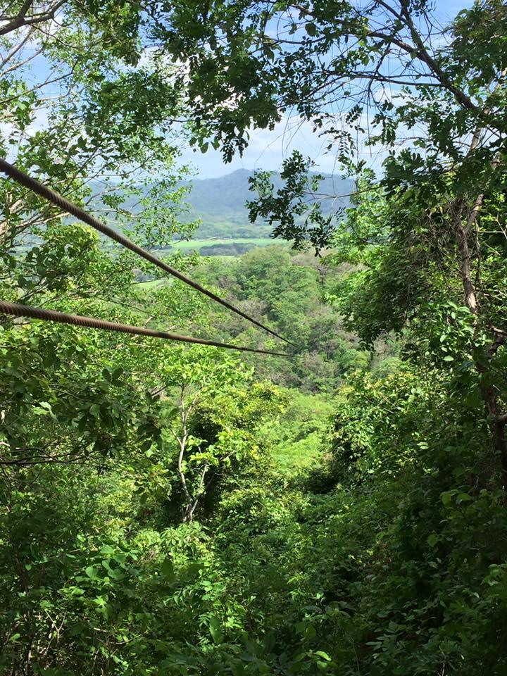 Pura Aventura Canopy and Horseback Adventures