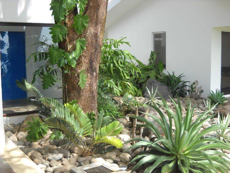 Meet the Locals: Ravenala Landscaping