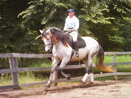Costa Rica Equestrian Vacation