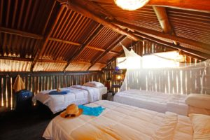 BarbaNegra Eco Surf Lodge