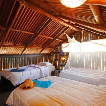 BarbaNegra Eco Surf Hostel