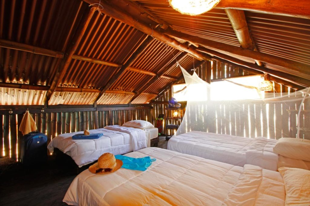 BarbaNegra Eco Surf Lodge - A full-vacation package